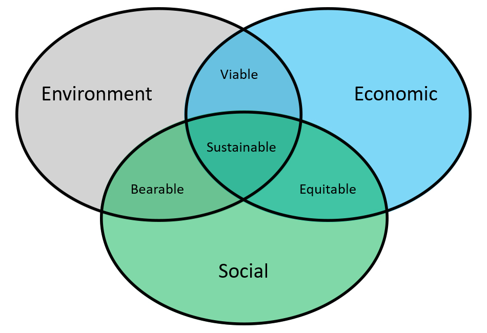 Sustainable Oracle Consulting